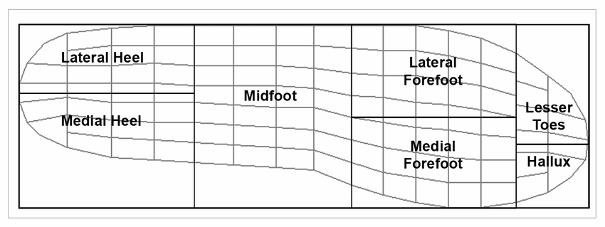 Seven plantar loading regions forming the foot mask