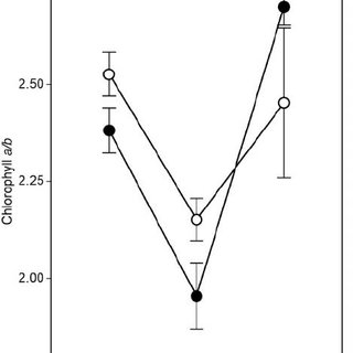 Leaf chlorophyll-to-carotenoid ratio in three seasons for