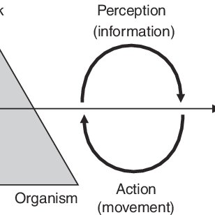 Newell's model of interacting constraints adapted to
