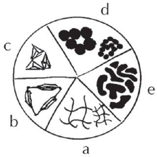 Schematic representation of liquid chromatography under