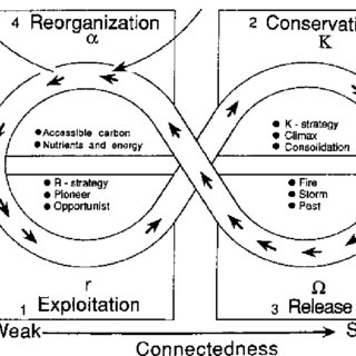 (PDF) Summary of biology and ecosystem dynamics in the
