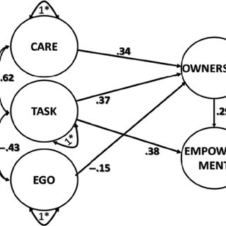 (PDF) Psychometric Support for the Ownership in Exercise