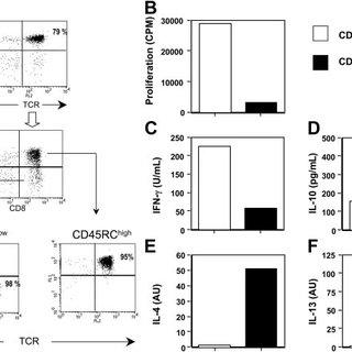 (PDF) Identification of a novel natural regulatory CD8 T