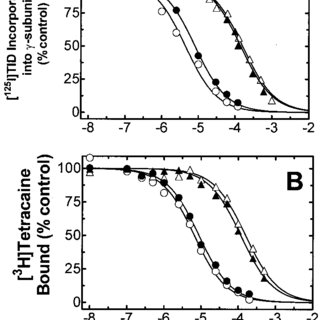 (PDF) Interaction of barbiturate analogs with the Torpedo