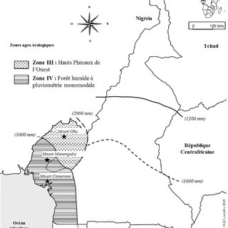 Mycorrhizal root colonization of P. africana directly from
