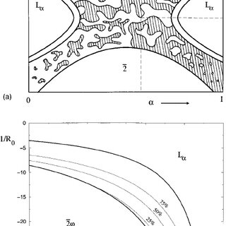 Microemulsion phase diagram as a function of the oil to