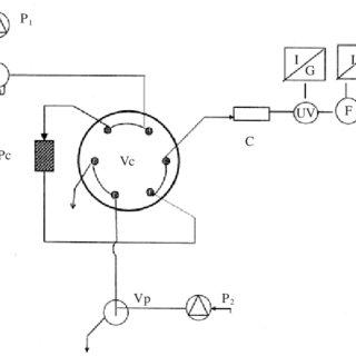 Diagrama del montaje experimental. P 1 : cromatógrafo para