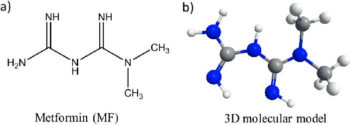 Metformin structural formula (a) and 3D molecular model (b