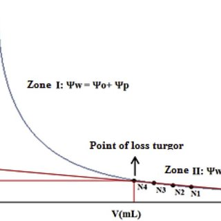 (PDF) Water potential in soil and Atriplex nummularia