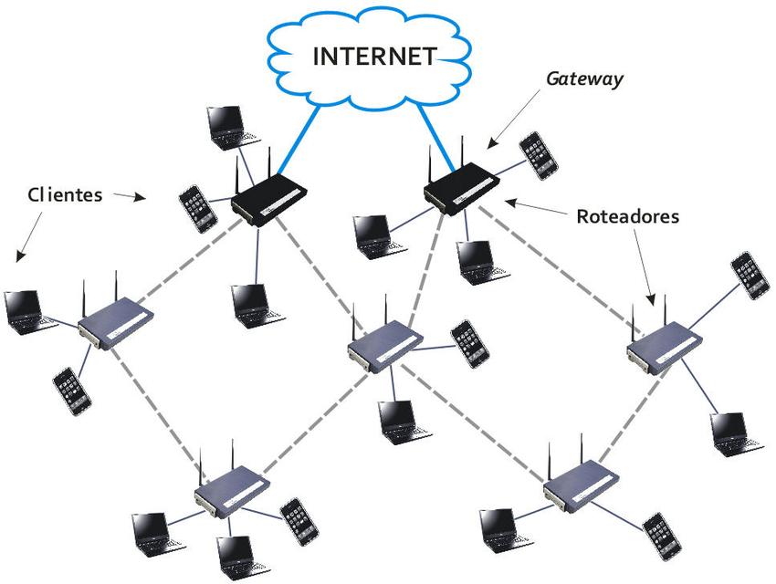 (a) Wireless mesh network sample (Silva et al., 2010) and
