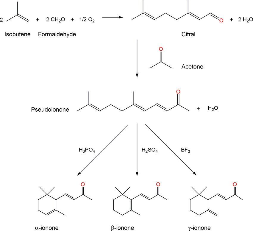 Ionone chemical synthesis. Condensation of citral and