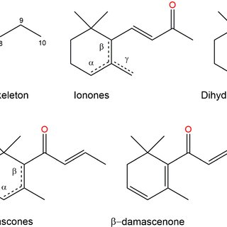 (PDF) Chemical vs. biotechnological synthesis of C13