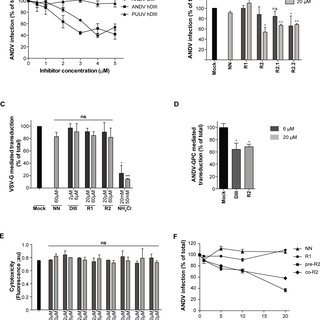 (PDF) Inhibition of the Hantavirus Fusion Process by