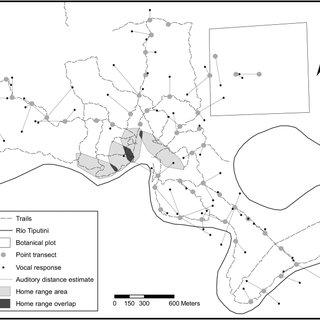 (PDF) Estimating Population Density of Amazonian Titi