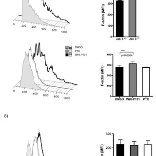 Chemokine receptor activates both signaling pathways Gαi
