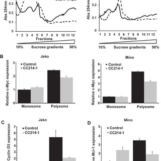 Effect of mTORC1/mTORC2 inhibitor CC214-1 on expression of