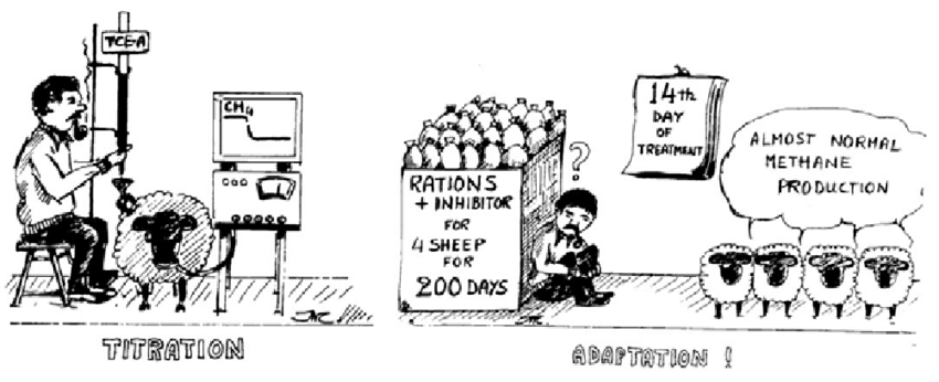 Cartoon showing the in vivo side-effects of dietary