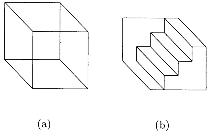 Two ambiguous drawings: (a) Necker cube, (b) ShroK der