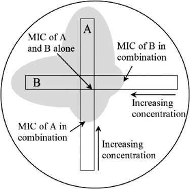 Diagram of strip-placement for the E-test synergy assay