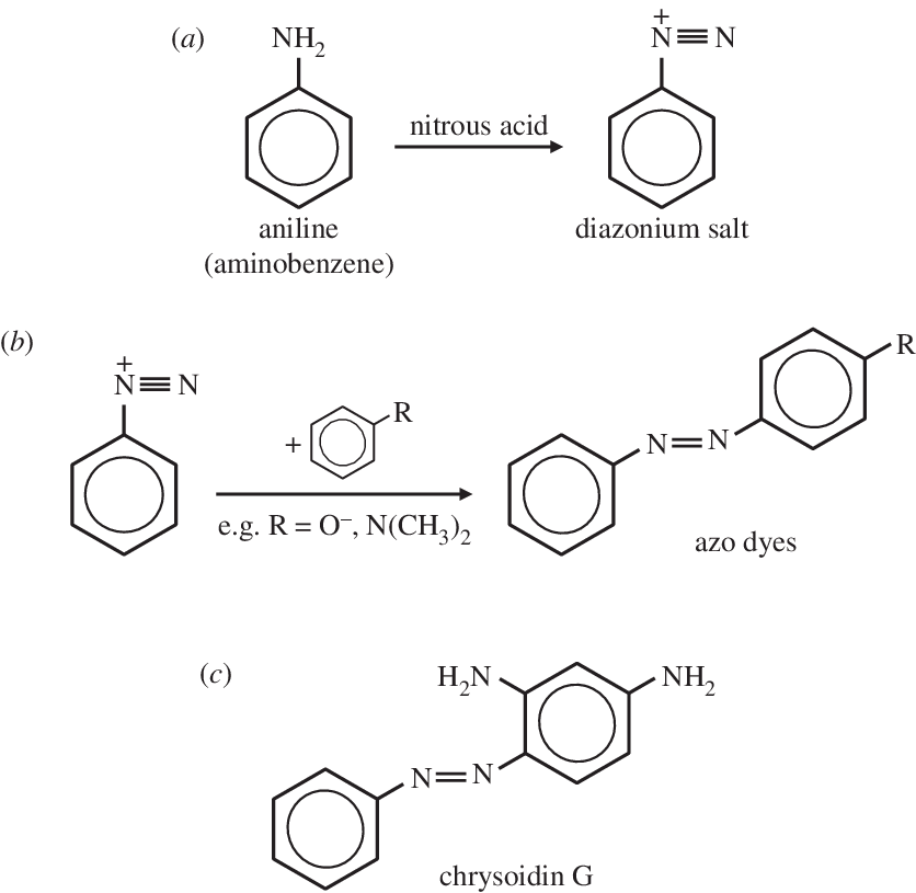 The diazotization process. (a) The reaction of aniline (or