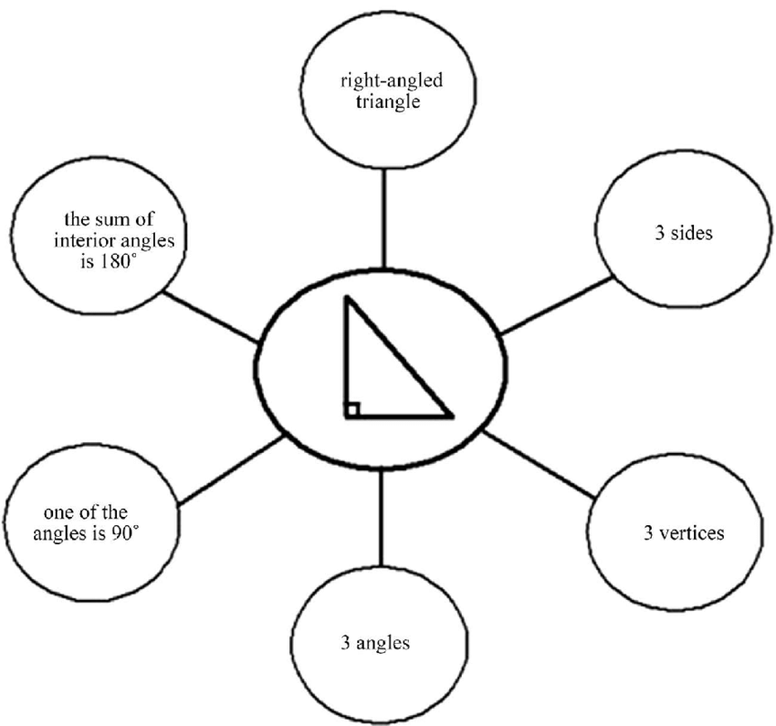 Suggested answers for bubble map for a right-angled