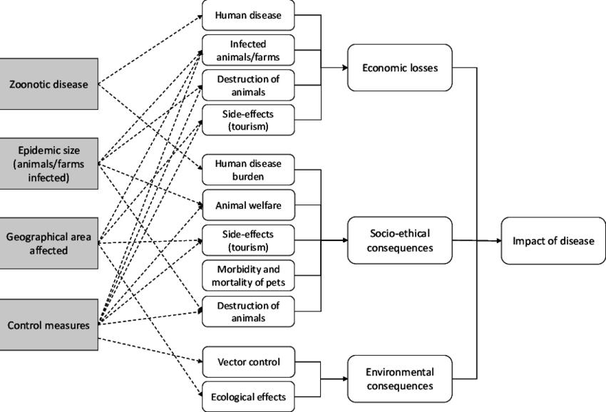 Flowchart for impact of emerging vector-borne diseases