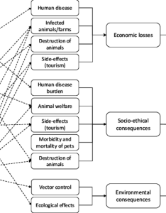 Flowchart for impact of emerging vector borne diseases also download rh researchgate