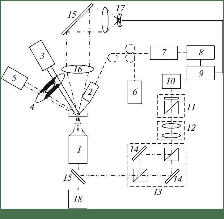 Block diagram of the experimental setup: (1) microscope