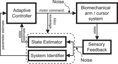Block diagram of adaptive motor control in the closed loop