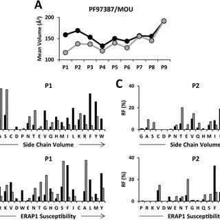 ERAP1 and ERAP2 expression among cell lines. ERAP2 (A) and