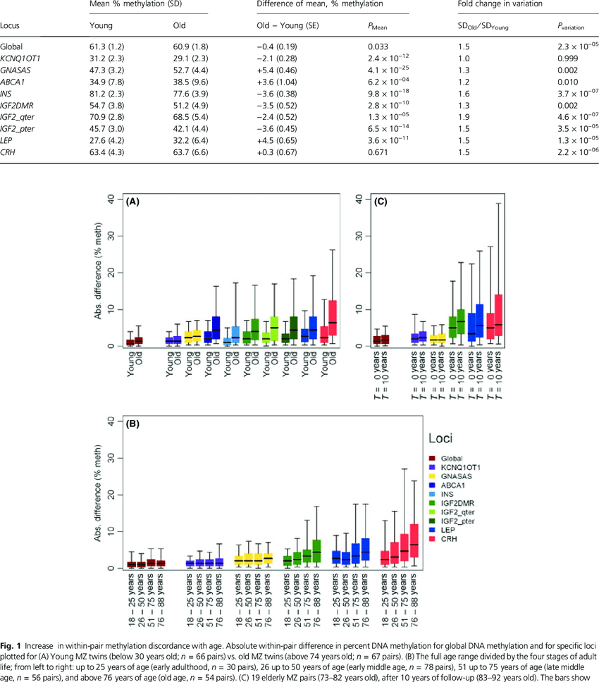 hight resolution of average dna methylation in young and old individuals
