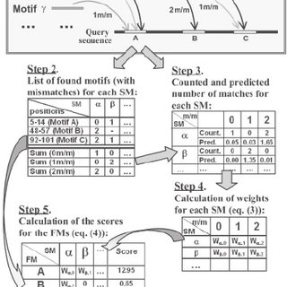 Main steps of the SiTaR algorithm. Step 1 (Search): each