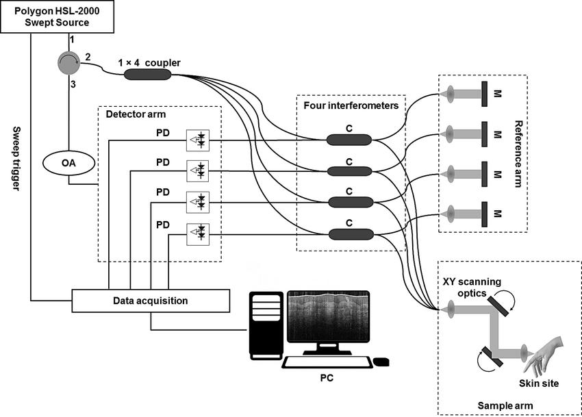 Schematic diagram of the multi-beam swept-source OCT; M