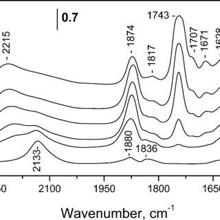 FTIR spectra of NO (133 Pa equilibrium pressure) adsorbed