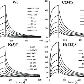 Time-course UV/Vis absorbance data for catalase-like