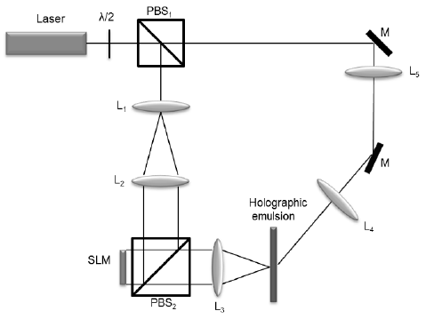 Schematic diagram of the holographic stereogram recording