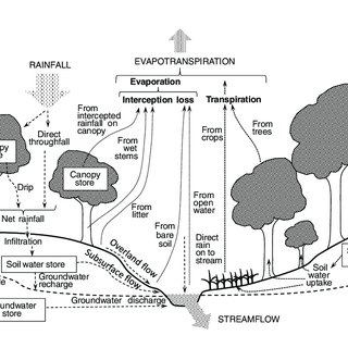 (PDF) Water-related ecosystem services and food security