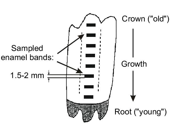 Sample Of Schematic Diagram