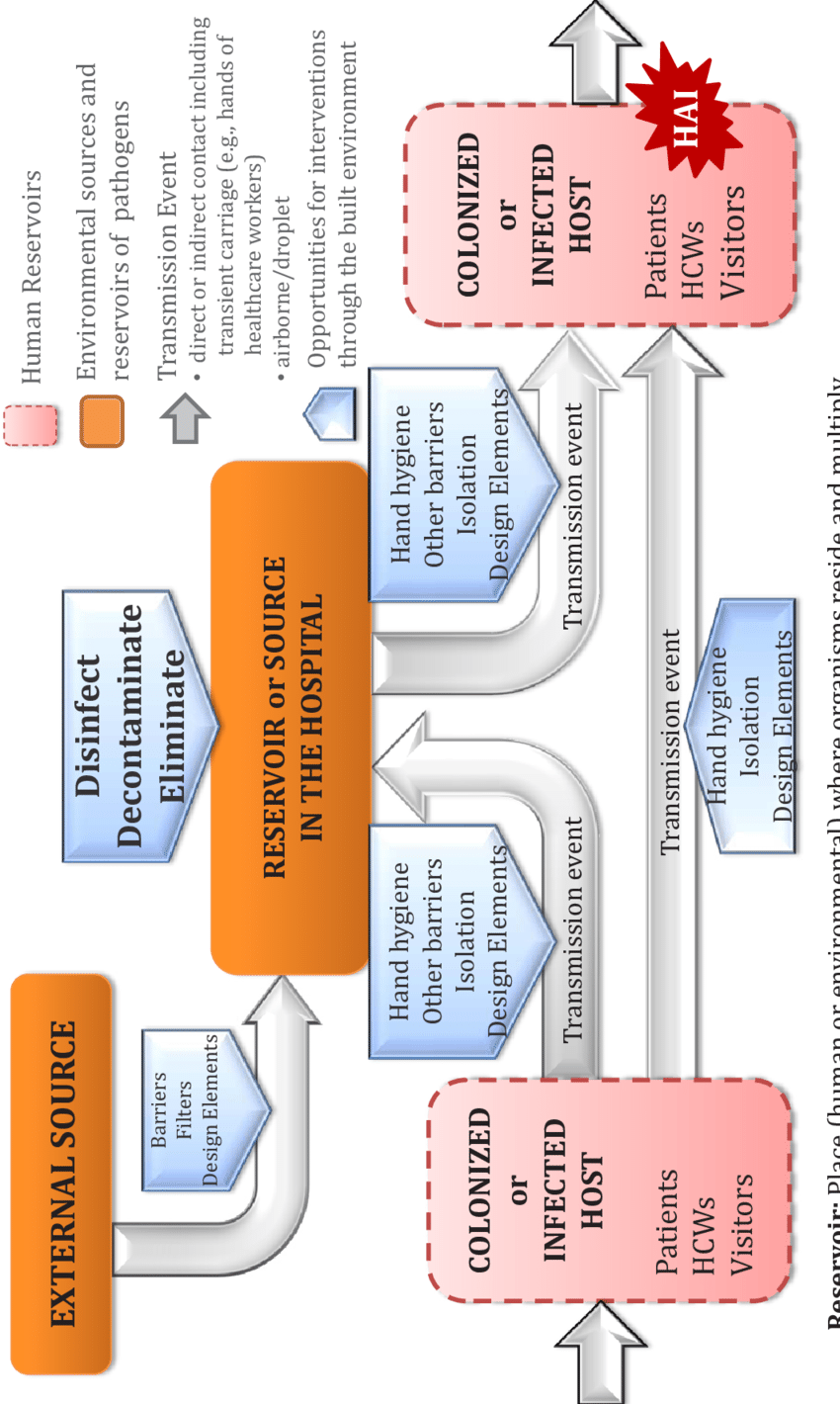 hight resolution of chain of transmission interventions model