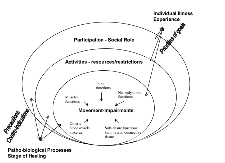 Model of ICIDH 2 with the integration of a manual-therapy