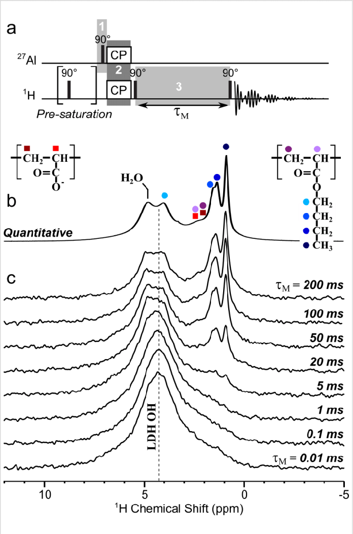 a) Radio-frequency-pulse NMR sequence used to probe LDH