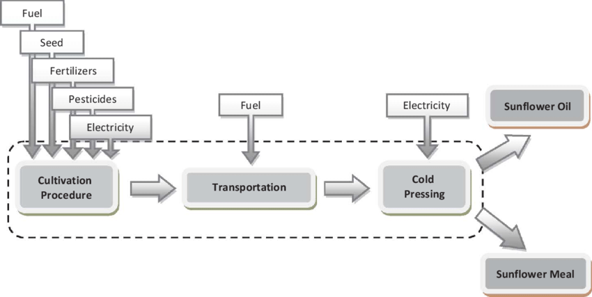 Flow chart of the life cycle chain of sunflower oil (color
