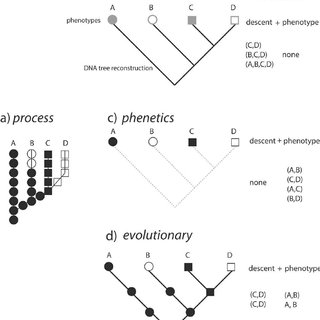 (PDF) Nothing in Taxonomy Makes Sense Except in the Light