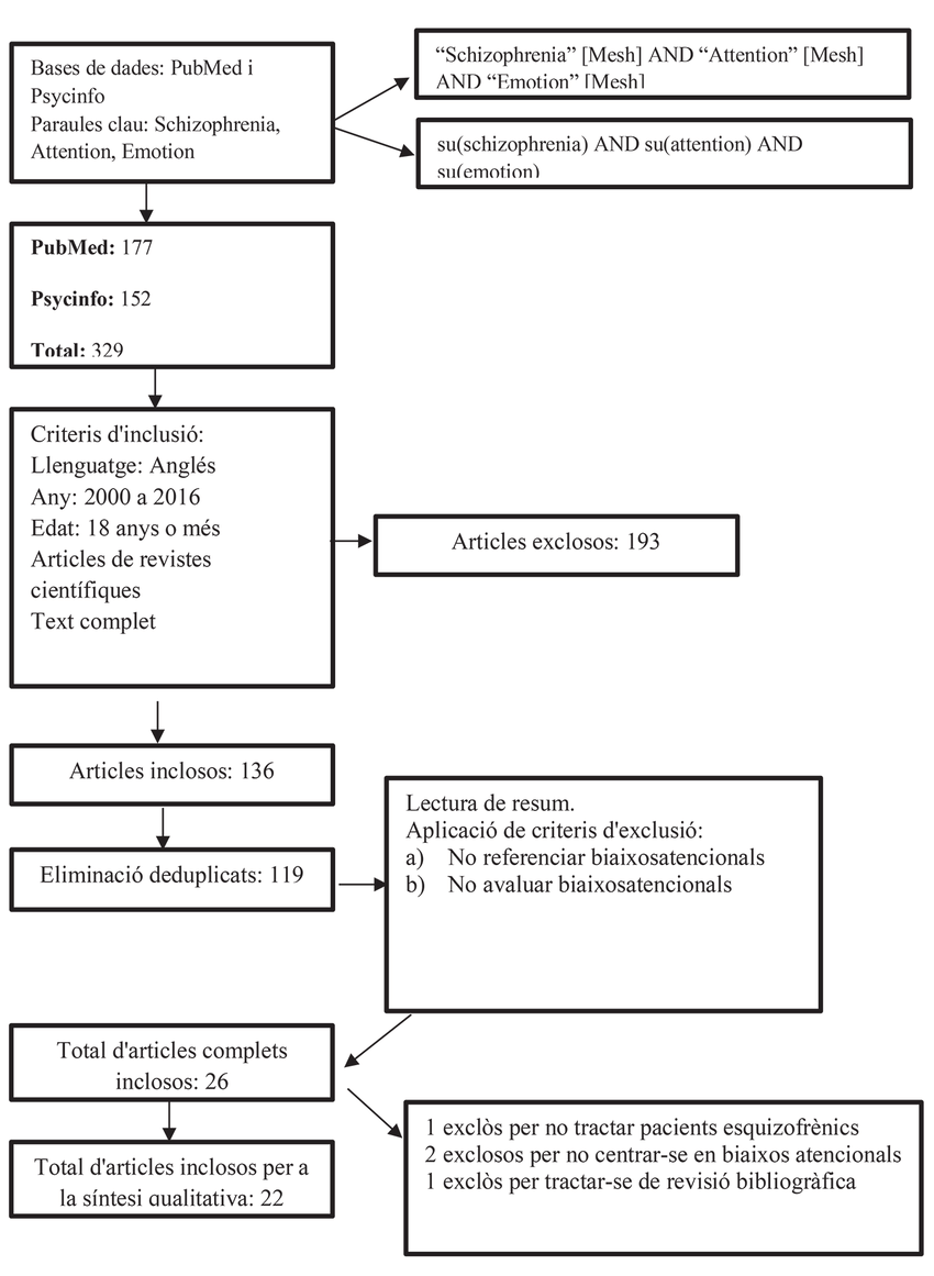 hight resolution of diagrama de flux elaboraci pr pia