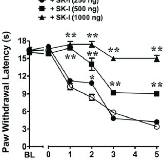 A–C) Intraplantar injection of carrageenan (1%) led to a