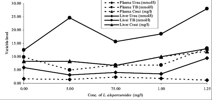 Relative ACP and ALP activity in the plasma and liver of