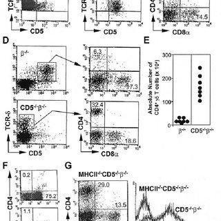 Development of GC in the spleen of CD5 ±/± b ±/± , but not