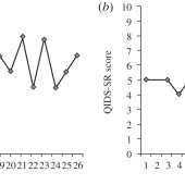 A schematic of mood patterns in bipolar disorder: the