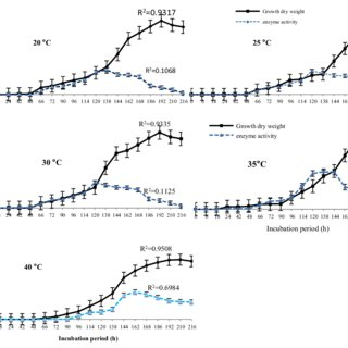 Effect of incubation period on growth and laccase