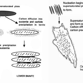 Schematic representation of the formation of upper and